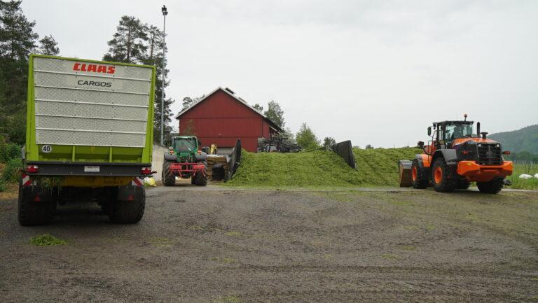 I tillegg til å få hjelp av samarbeidspartner Wold Hansen er hele storfamilien er engasjert når siloslåtten står på.