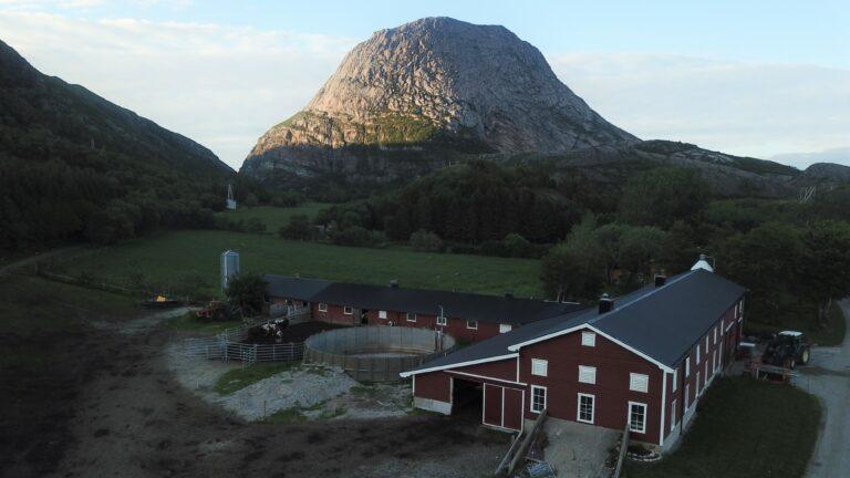 Gården Hestmongården ligger på sørsiden av den karakteristiske øya, nord på Helgelandskysten.