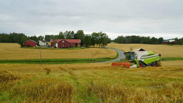 Gården Søndre Stenerud har 210 dekar dyrka mark, i tillegg forpakter Harald en del så totalt treskeareal blir 1 200-1 300.