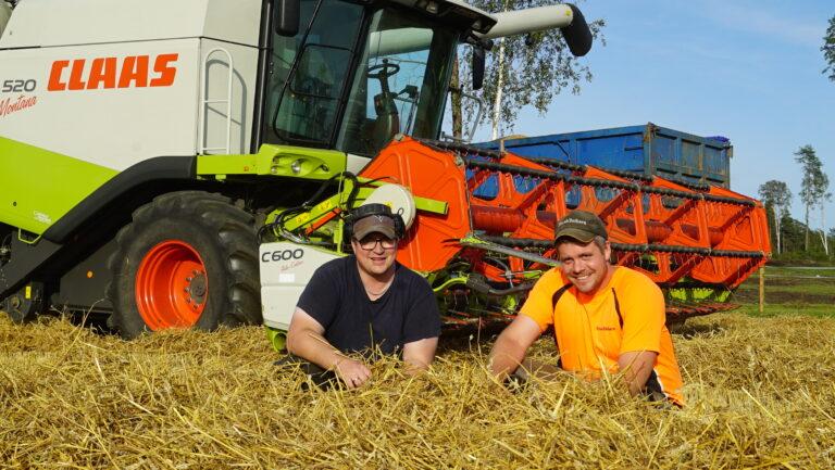Jon Olav og Hans-Trygve er både kamerater og gode samarbeidspartnere rundt hverandres gårdsdrift.