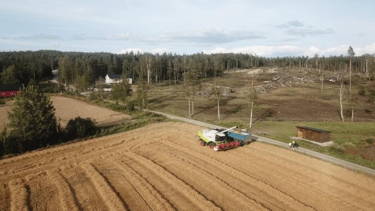 vlcsnap-2019-08-13-13h14m50s503