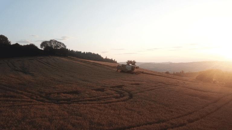 vlcsnap-2019-09-03-09h46m13s387