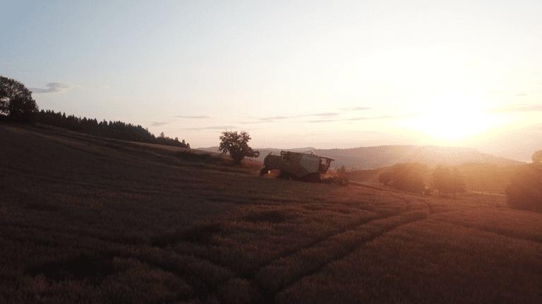 vlcsnap-2019-09-03-09h46m18s670