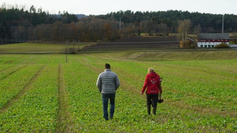 HUSK SPADEN: Med et spadetak kan du finne ut masse om jordhelsesituasjonen til jorda di.