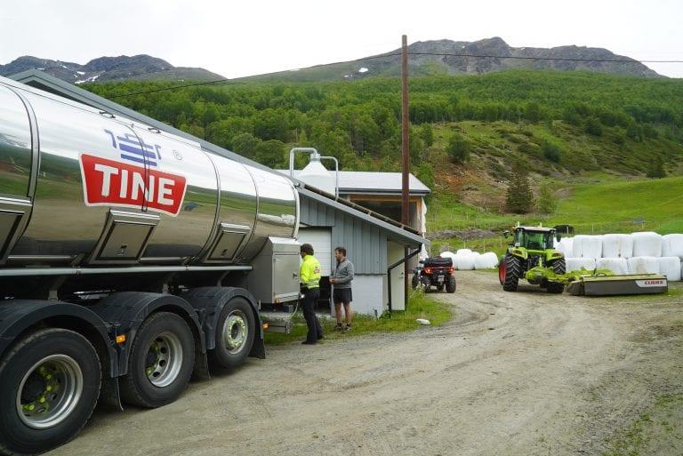 Geitemelka fra Kilnes gård leveres til TINE meieriet i Balsfjord. Ifølge Geir Tommy er dette av de beste områdene for geit er i Norge, og alene i Kåfjord kommune er det seks bruk med geit.